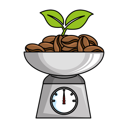 gramer with coffee seeds isolated icon vector illustration design