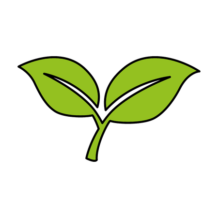 leafs plant isolated icon vector illustration design Çizim