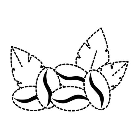 コーヒー種子と葉ベクトルイラストデザイン