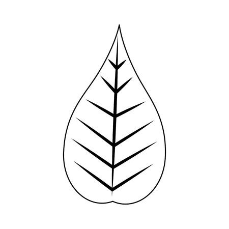 크리스마스 장식 단풍 잎 자연 벡터 일러스트 레이션 일러스트