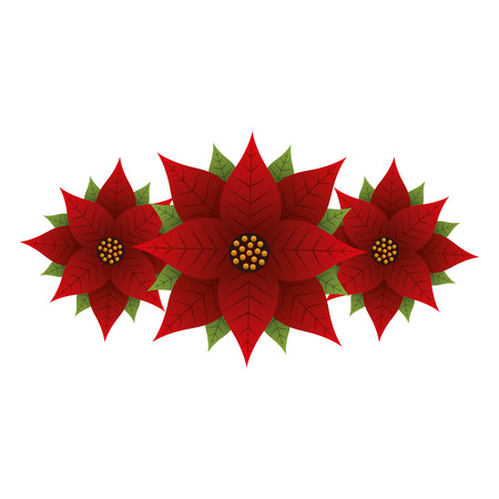 Christmas poinsettia flower and leaves decoration vector illustration