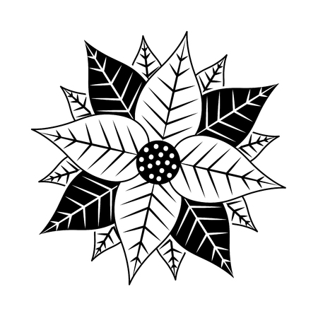 christmas poinsettia flower and leaves decoration vector illustration Ilustrace