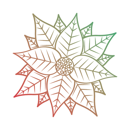 Christmas poinsettia flower and leaves decoration.
