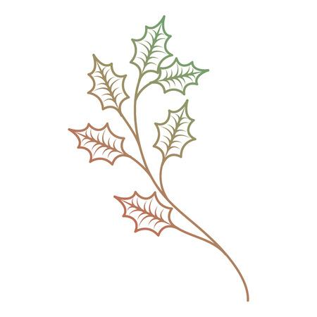 크리스마스 트리 분기 가문비 나무 전나무 자연 장식입니다.