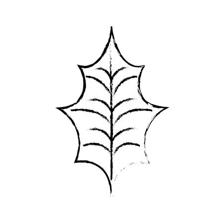christmas leaf holly natural decoration vector illustration Illustration