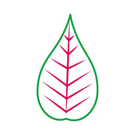 クリスマス装飾葉葉自然ベクター イラスト