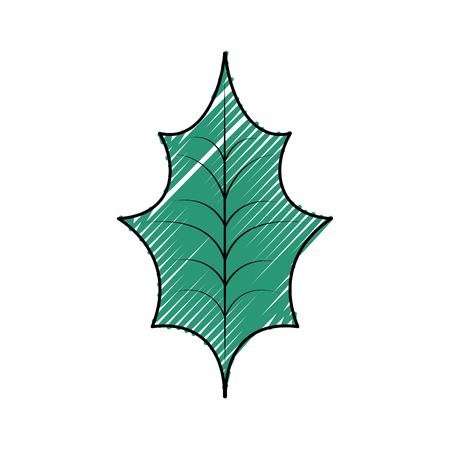 a sprig: Christmas leaf holly natural decoration.