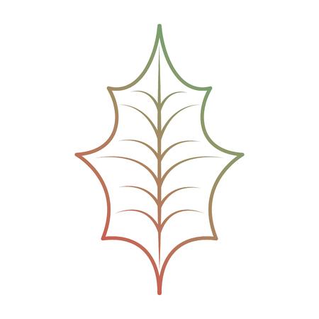 christmas decoration leaf holly natural vector illustration Illustration