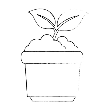 garden pot with plant vector illustration design Illustration