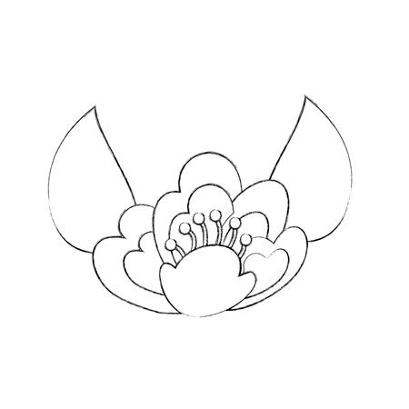 벚꽃 잎 자연 섬세 한 블룸 이미지 벡터 일러스트 레이션 일러스트