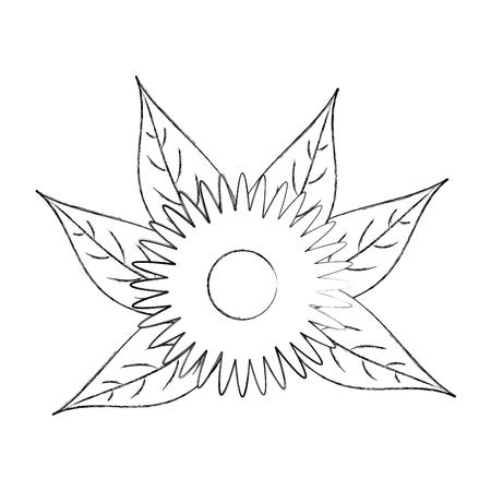 ダリア花の花飾り庭の花びら葉茎ベクトルイラスト  イラスト・ベクター素材