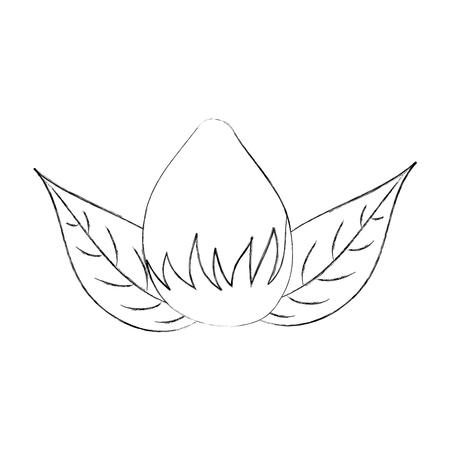 bloembol aard verlaat gebladerte decoratie pictogram vectorillustratie