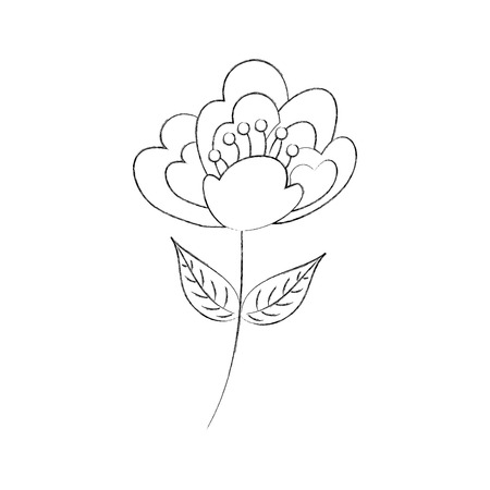 cherry flower nature delicate stem petal vector illustration
