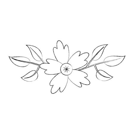 aster flower natural petal leaves decoration vector illustration