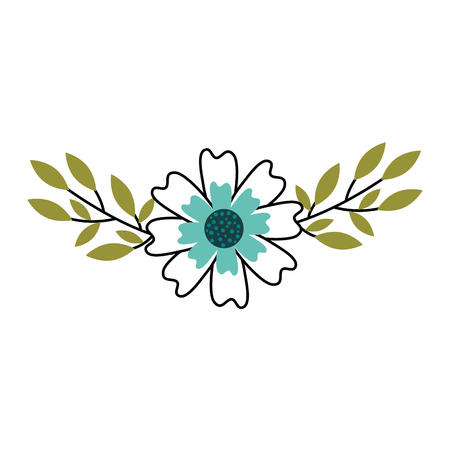aster flower natural petal leaves decoration vector illustration