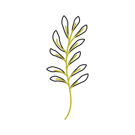 Planta de rama con hojas ilustración de vector de jardín follaje natural Foto de archivo - 90043080