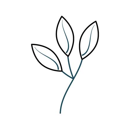 Planta de rama con hojas follaje natural ilustración vectorial jardín Foto de archivo - 90043082