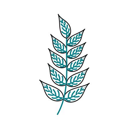 Planta de rama con hojas ilustración de vector de jardín follaje natural Foto de archivo - 90043083