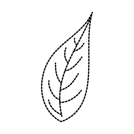 leaf natural foliage botanical vegetation icon vector illustration 向量圖像