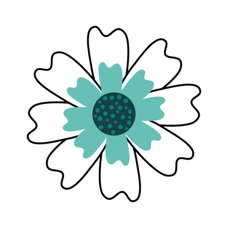 aster flower natural petal decoration image vector illustration