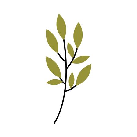 Planta de rama con hojas ilustración de vector de jardín follaje natural Foto de archivo - 90043229
