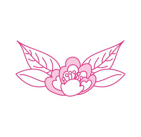 cherry flower leaves nature delicate bloom vector illustration Illustration