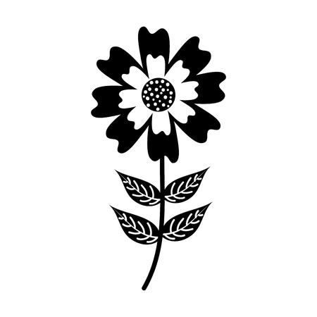 aster flower natural petal leaves stem vector illustration