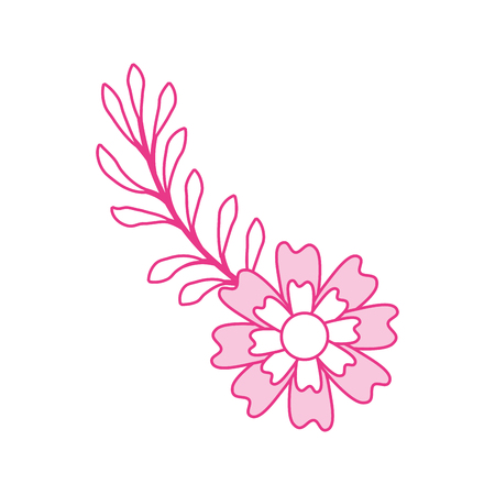 aster flower branch leaves natural petal decoration vector illustration Иллюстрация