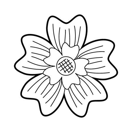 periwinkle flower adornment nature plant vector illustration Illustration
