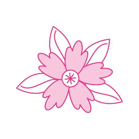 crocus flower leaves natural decoration ornament vector illustration