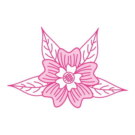 periwinkle flower nature plant leaves decoration vector illustration