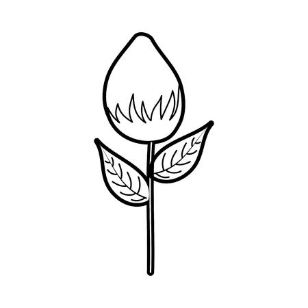 flower garden growth bulb natural image vector illustration