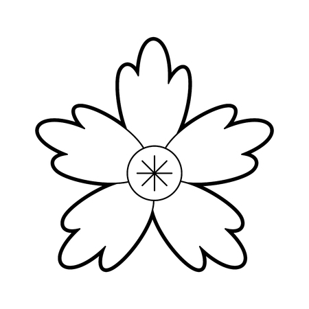crocus flower natural decoration ornament vector illustration