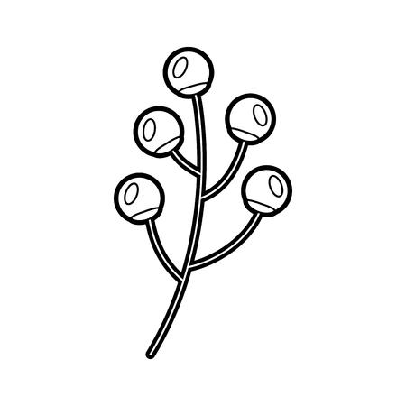 branch berries plant flora natural image vector illustration