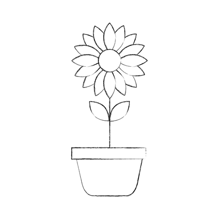 potted flower nature decoration interior plant vector illustration