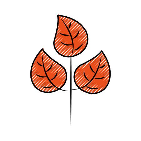 秋葉自然植物学の葉ベクトルイラスト