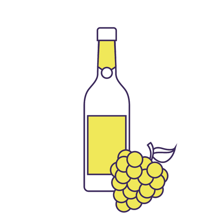 bottle of wine and bunch of grapes alcohol celebration vector illustration