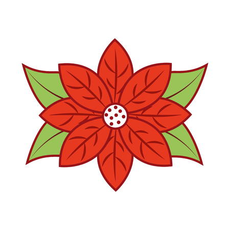 poinsettia flower for christmas decoration natural vector illustration