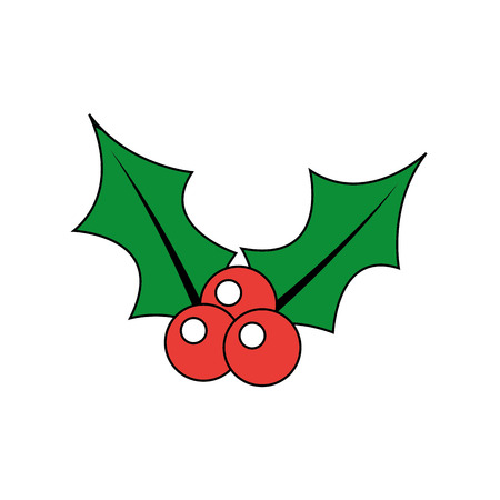 christmas berry holly leaves and fruit decoration vector illustration Фото со стока - 90162173