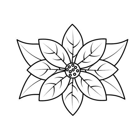 poinsettia flower for christmas decoration natural vector illustration Stock fotó - 90164040