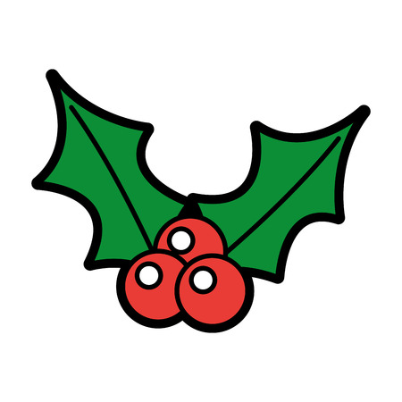 christmas berry holly leaves and fruit decoration vector illustration