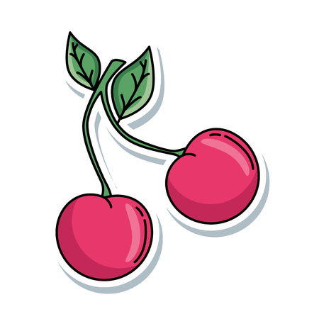 delicious cherry isolated icon vector illustration design