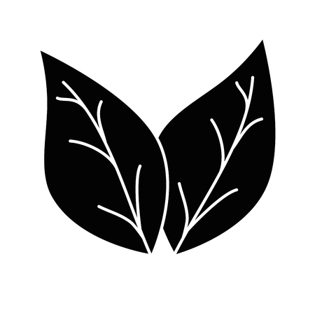 leafs plant isolated icon vector illustration design Stok Fotoğraf - 90191131
