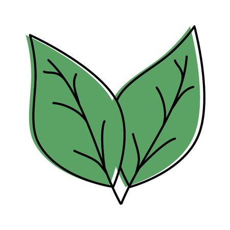 leafs plant isolated icon vector illustration design Stok Fotoğraf - 90191899