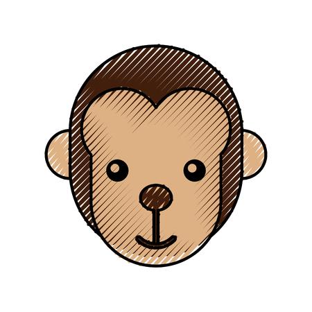 cute baby monkey animal jungle zoo vector illustration