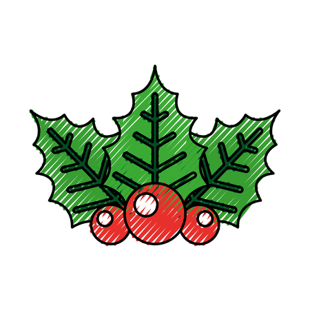 twig of christmas holly with leaves berries on white background vector illustration