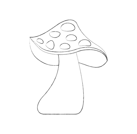 autumn mushroom natural flora forest vector illustration