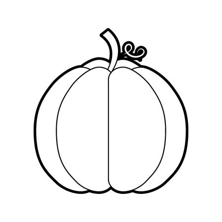 autumn seasonal pupmkin harvest nature vector illustration
