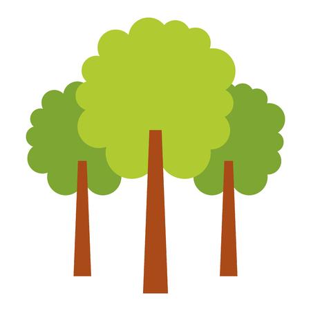自然緑の三本の木紅葉森林公園