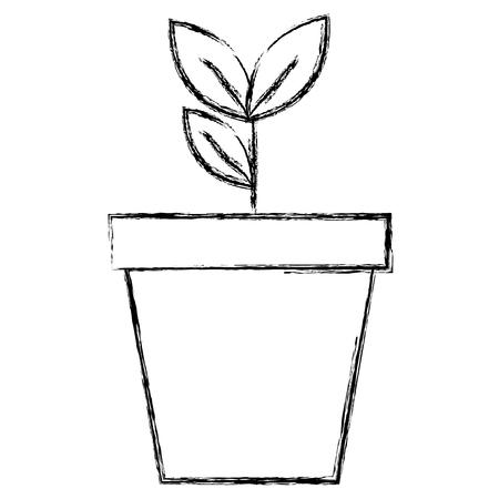plant in pot icon vector illustration design